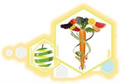 Egyptian Non-profit nutrition
